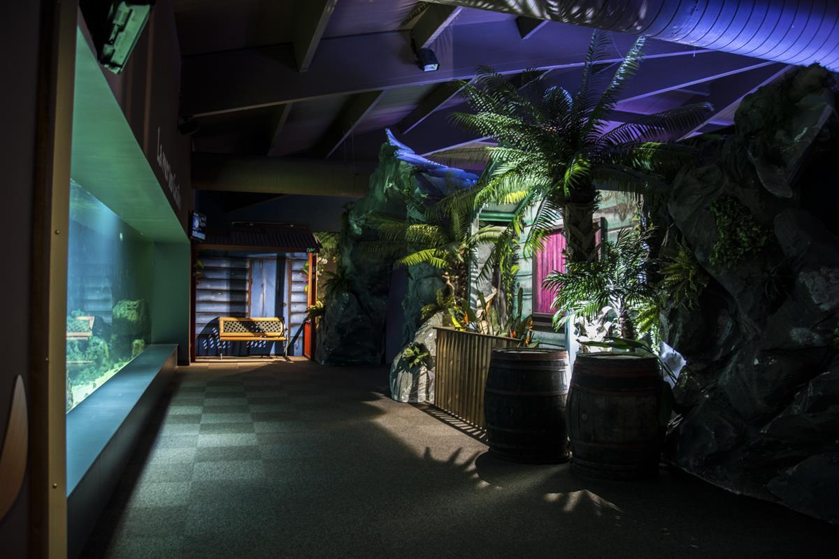 Aquarium De Vendee Visiter La Vendee Campilo